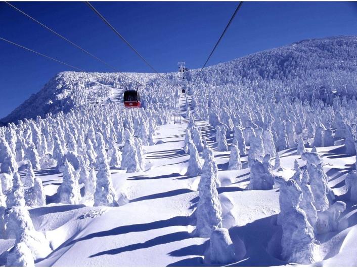 zaoh-706x529 家族と、友人と、恋人と。Jeep®で乗りこみたい全国のスキー&スノボ スポット