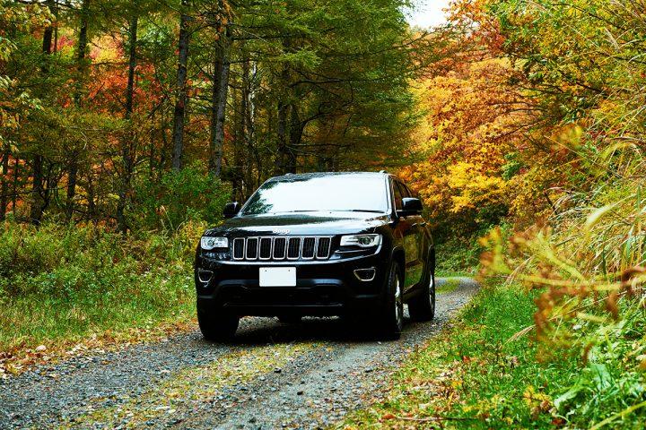 Jeep_151013_261