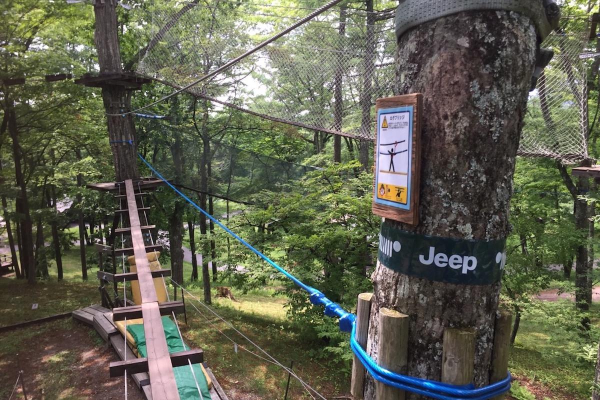 jeep1 【アウトドアアクティビティ10選】初心者でもOK!春〜夏に挑戦したい爽快なレジャー・外遊びをご紹介!