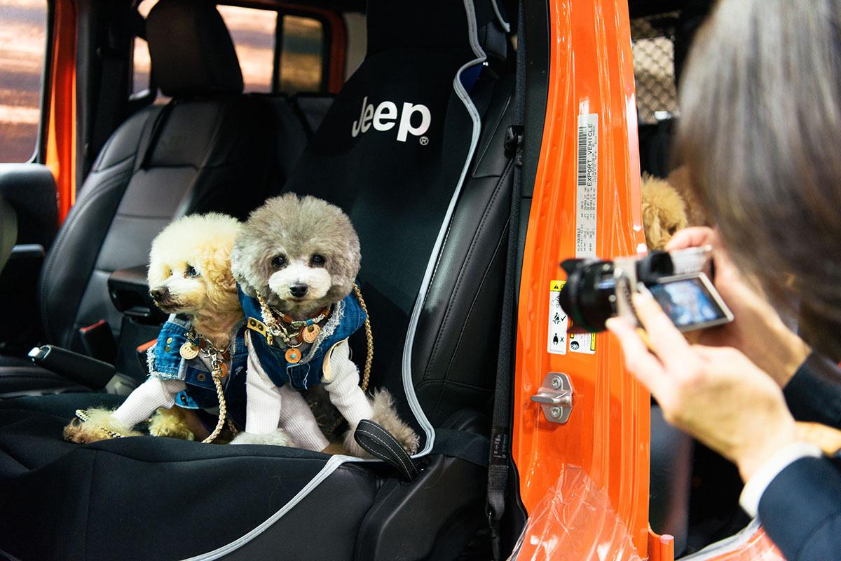 """190411_jeep_interpets_report_2019-14 【インターペット2019レポート】Jeep® が目指す""""ペットと共生するライフスタイル"""""""