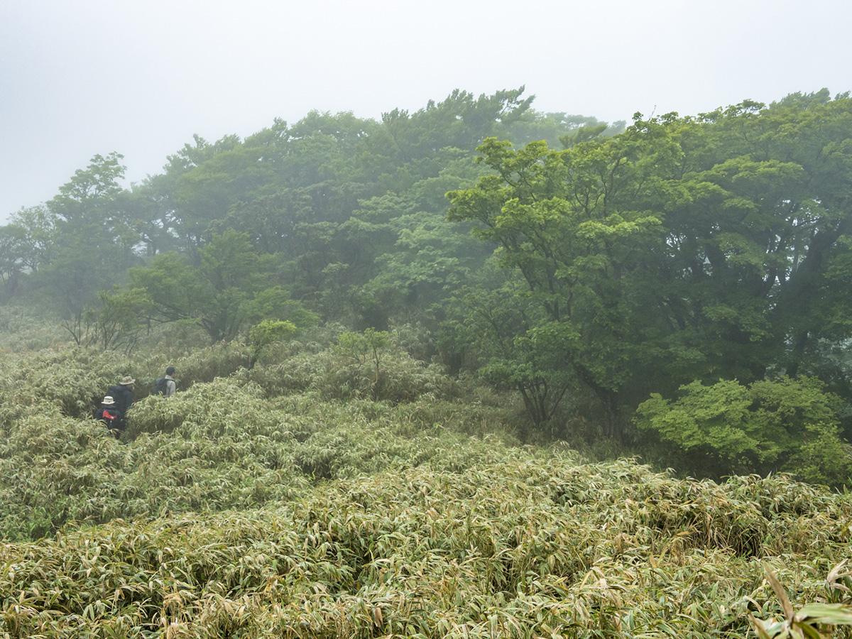 18 UNMAP YOUR LIFE 〜山梨県、竜ヶ岳&本栖湖編〜 山歩き&こだわりのオートキャンプ