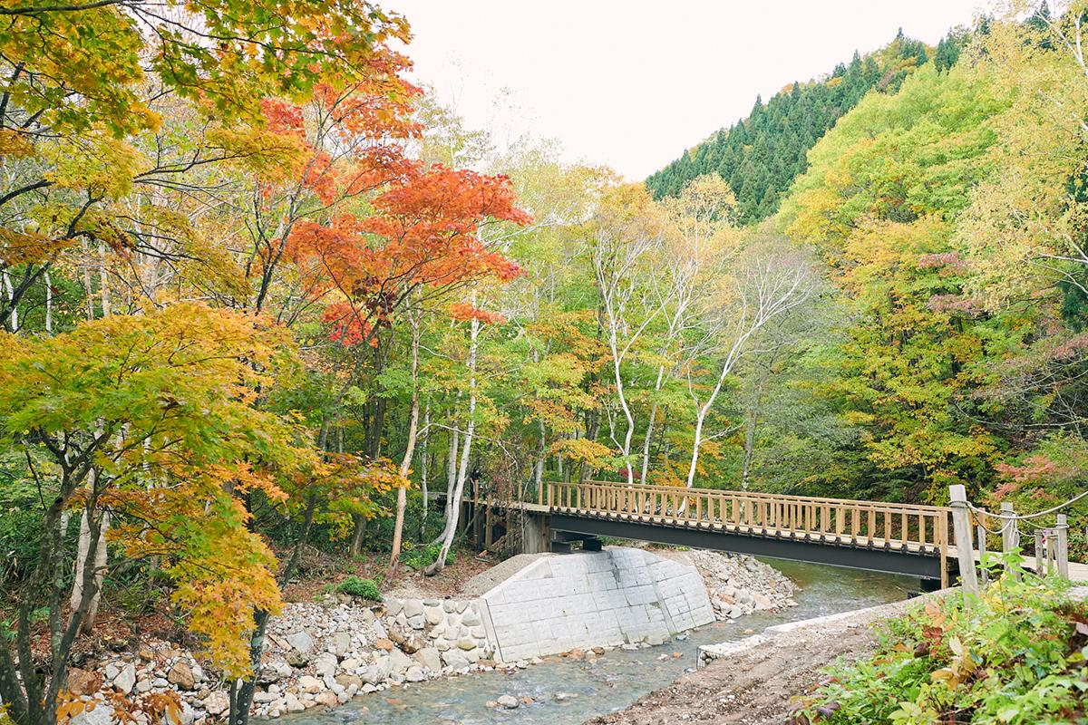 201024_QTC0288 Jeepがサポートする『フジロックの森プロジェクト』。次の10年に向けて生まれ変わる苗場の風物詩