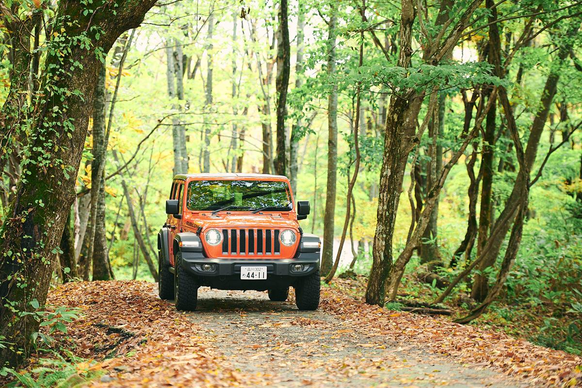 201024_QTC0718 Jeepがサポートする『フジロックの森プロジェクト』。次の10年に向けて生まれ変わる苗場の風物詩